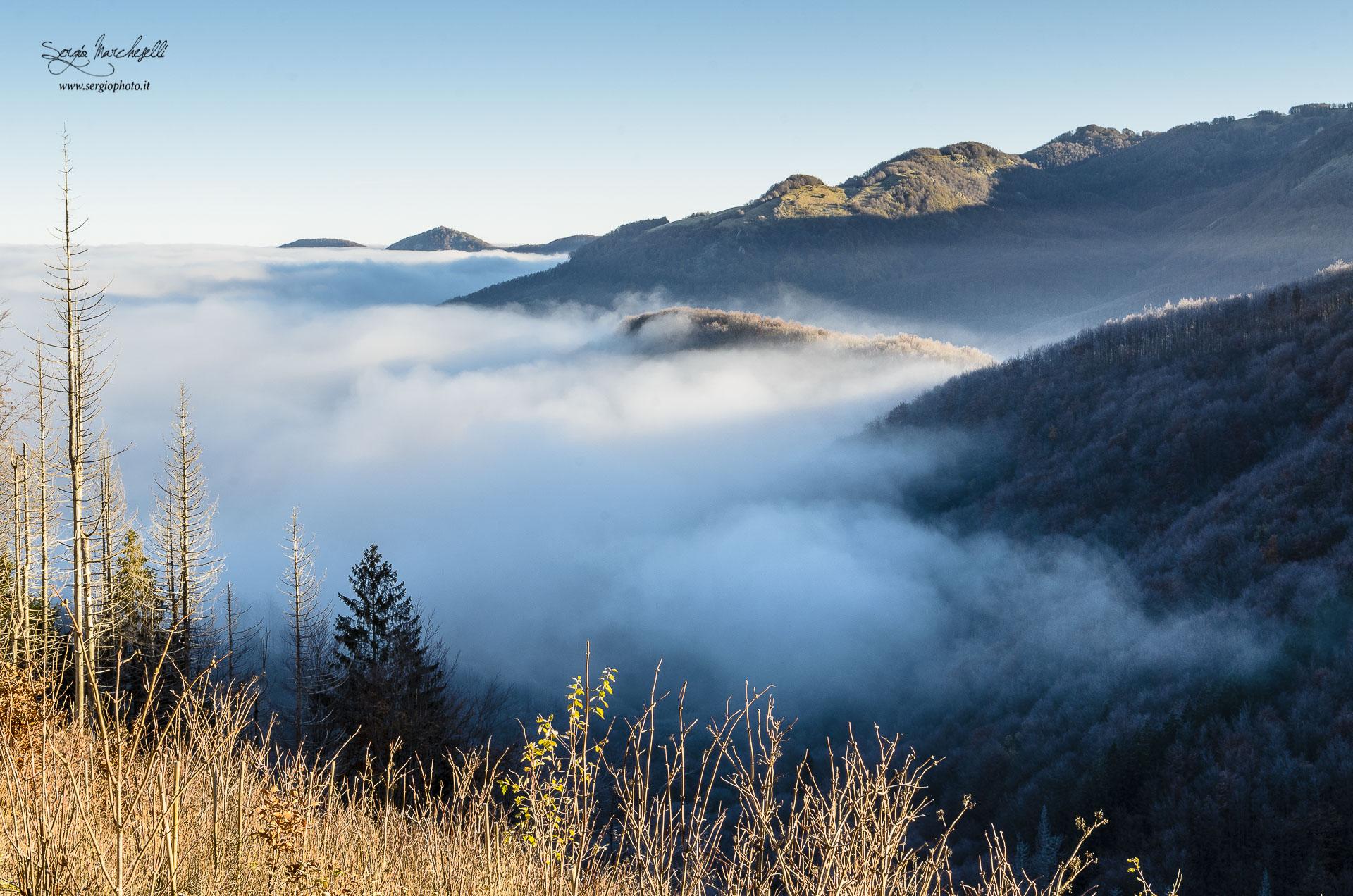 nebbia-nella-valle