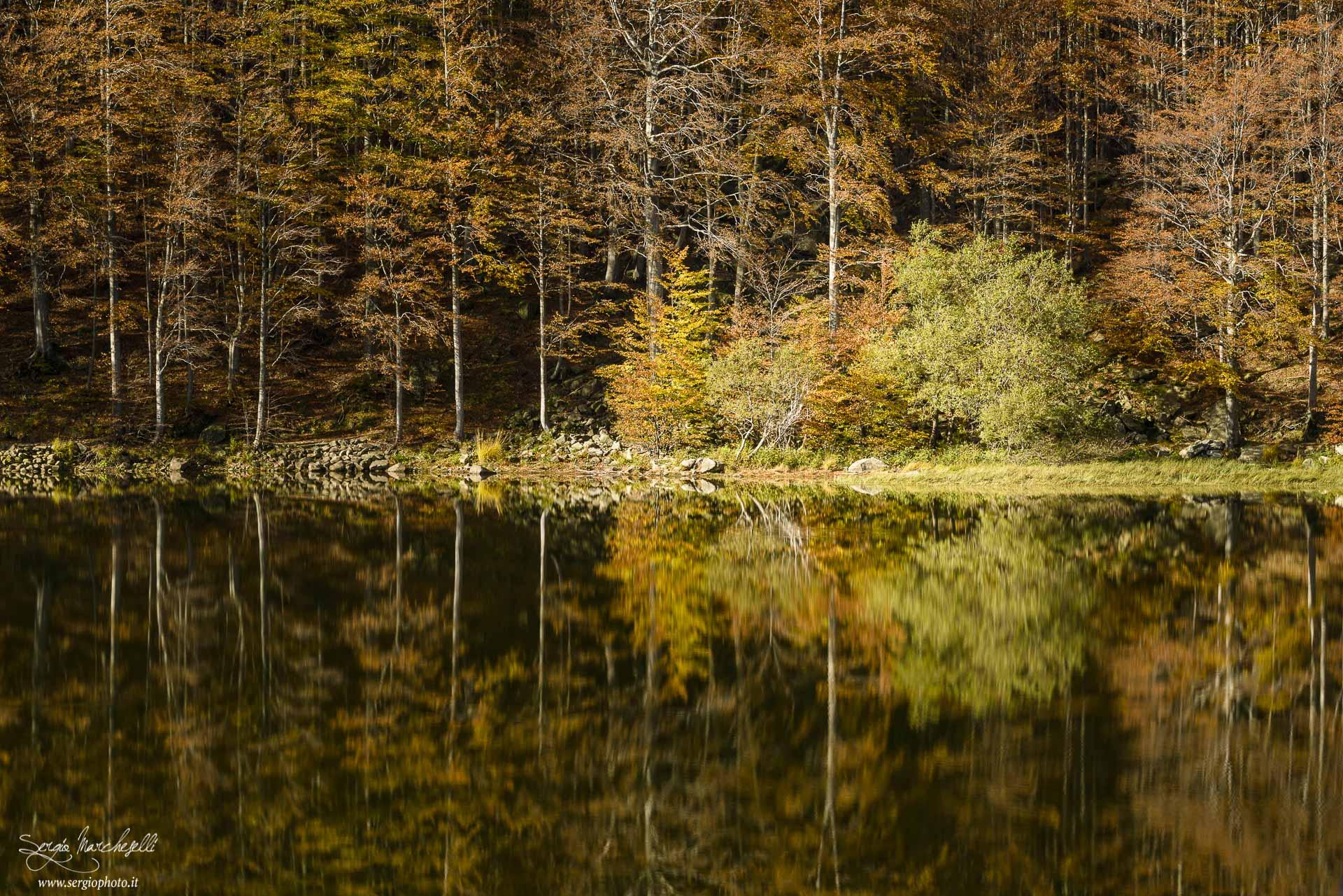acqua-e-colori_01