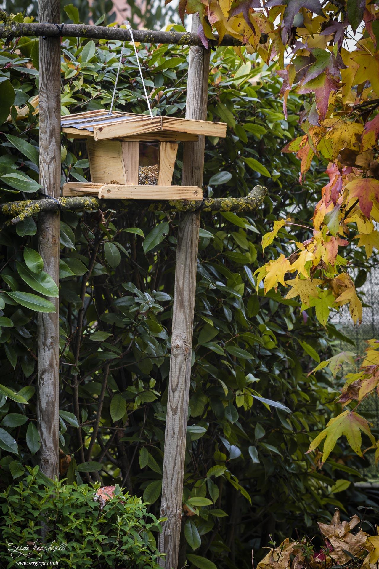 casetta-uccellini