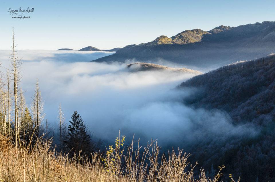 Nebbia alta